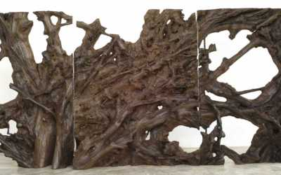 07 LARGE MAHOGANY ROOTS TRIPTYCH