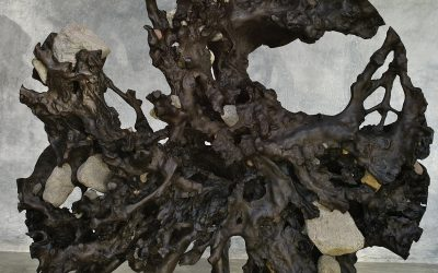 02 ROUND TEAK ROOT SCULPTURE