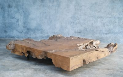 21 SQUARE TEAK ROOT COFFEE TABLE