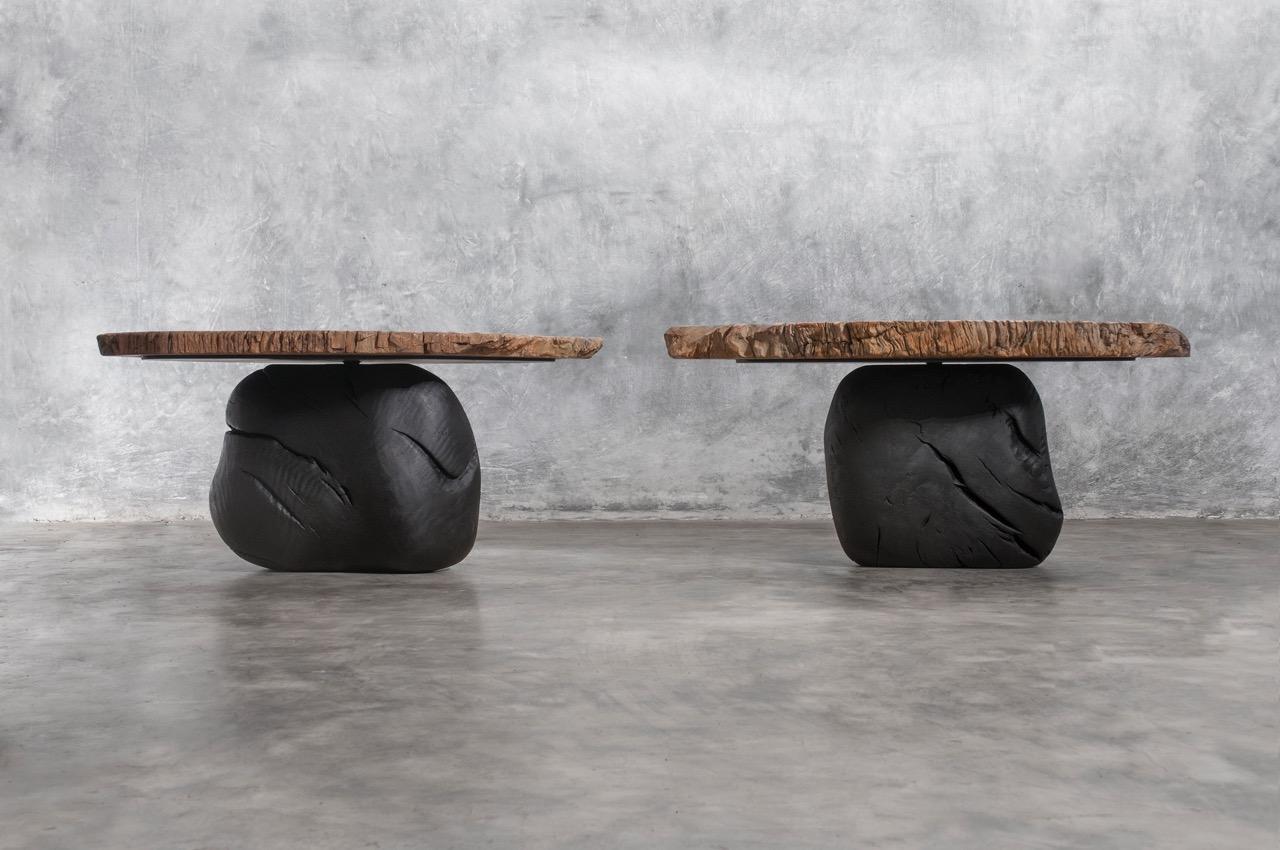2 petrified wood coffee table_A_LOW