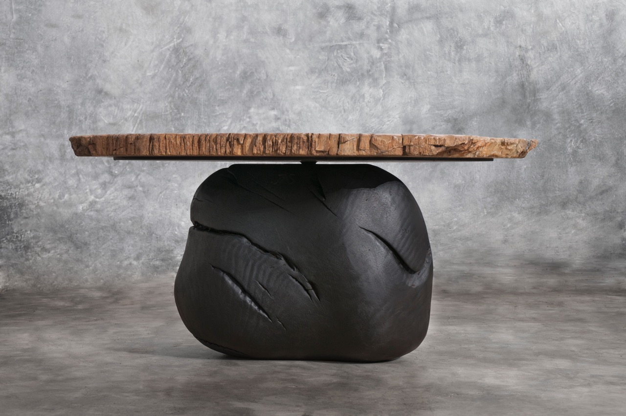 2 petrified wood coffee table_I