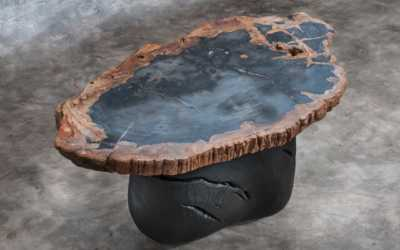 set of petrified wood coffee table
