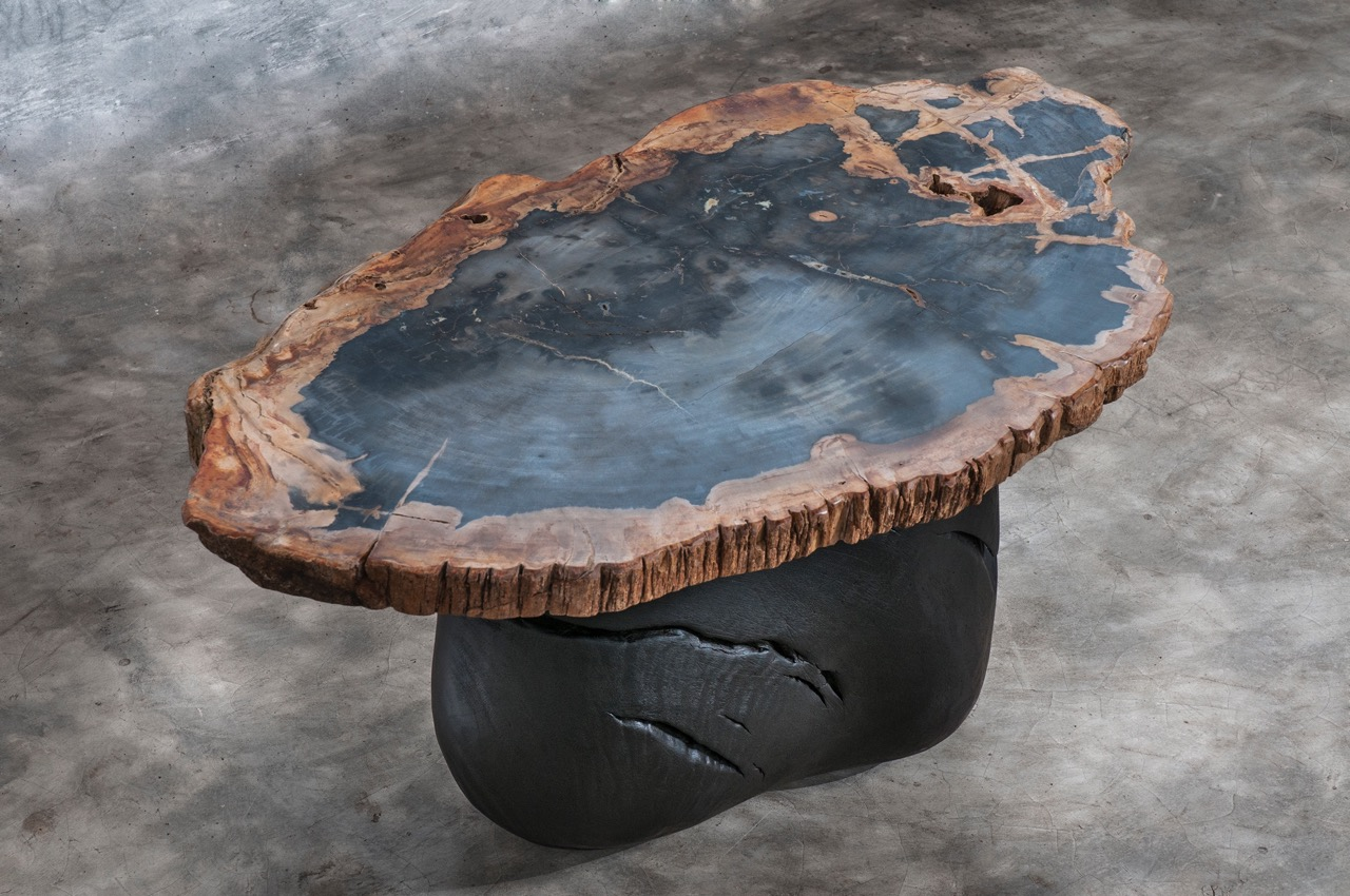 2 petrified wood coffee table_L_LOW