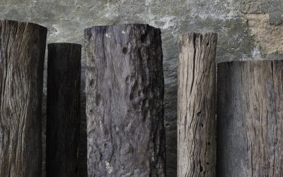 25 ERODED IRON WOOD POST