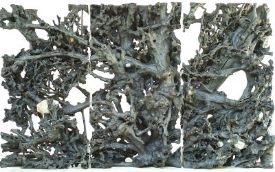 03 LARGE TRIPTYCH MAHOGANY ROOT