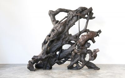 05 MAHOGANY ROOT SCULPTURE