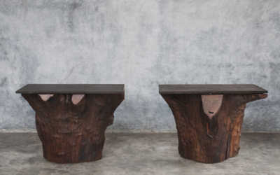 Pair of iron wood console