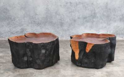 pair of litchie trunk coffee table