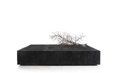 KALIMANTAN COLLECTION LARGE ERODED IRON WOOD COFFEE TABLE